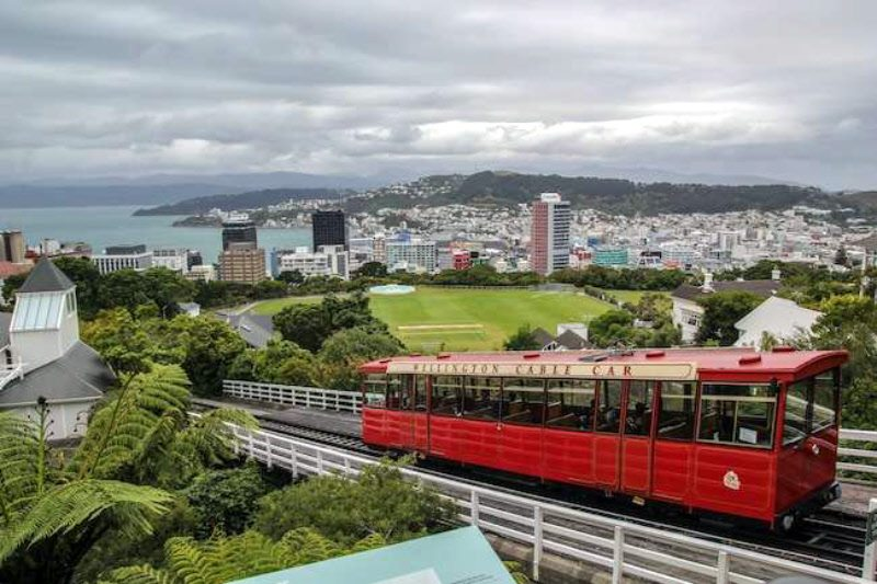 A great view as you ride the tram up to the Kilburn Lookout in Wellington!
