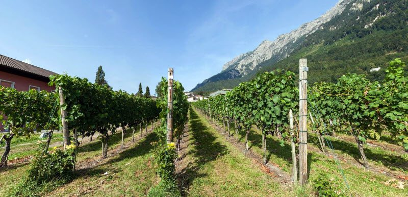 The clear air of Liechtenstein makes the countryside extra piquant! The vineyards on the slopes of the rocky mountains and the castles and palaces throughout this small country make it a super vacation spot.