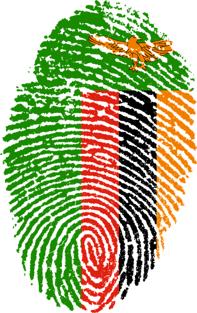 zambia flag fingerprint country pride identity symbol sign finger print national nation patriotic patriotism symbolic fingermark travel id culture citizenship sovereign fingerprinted identification individuality personal impression emblem heritage government passport ink security investigation privacy immigrant citizen biometric immigration africa african zambian zambia zambia zambia zambia zambia fingerprint biometric immigration zambian