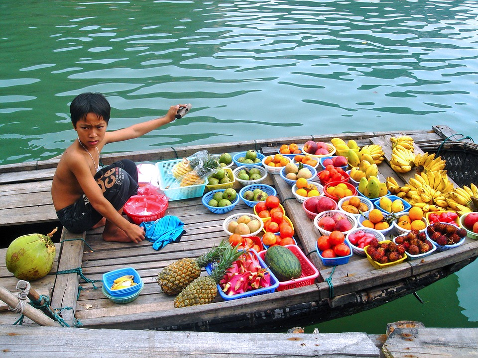 selling fruits boy delicious halong bay bay beautiful ocean boat sea vietnam vietnamese asia vendor children landscape water green nature indochina famous exotic natural tourism hanoi mountains scenery spectacular travel vacation colorful color beach boy halong bay halong bay vietnam vietnam vietnamese hanoi hanoi hanoi hanoi hanoi