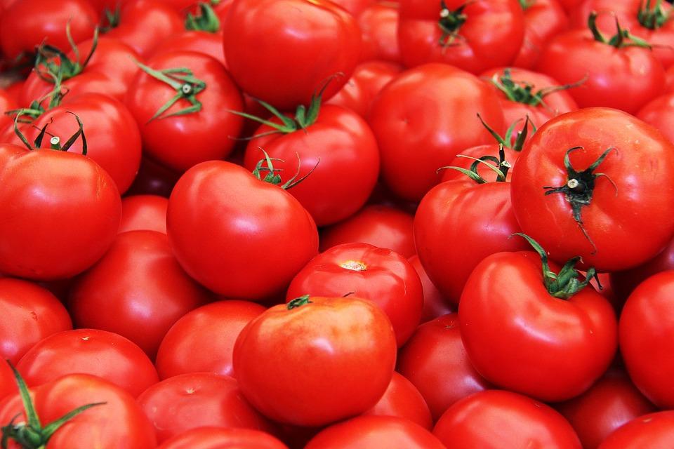 tomato, fruits, fresh